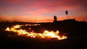 rin noche quemando chufar